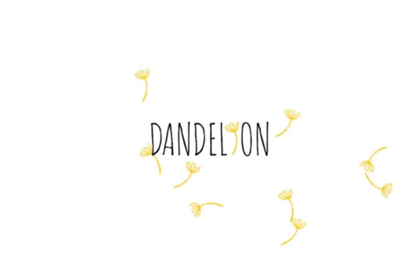 Dandelion Dance company – Promotional video